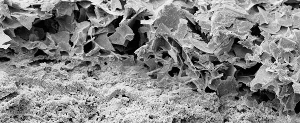 Beschichtung mit Kefarid unter dem Mikroskop